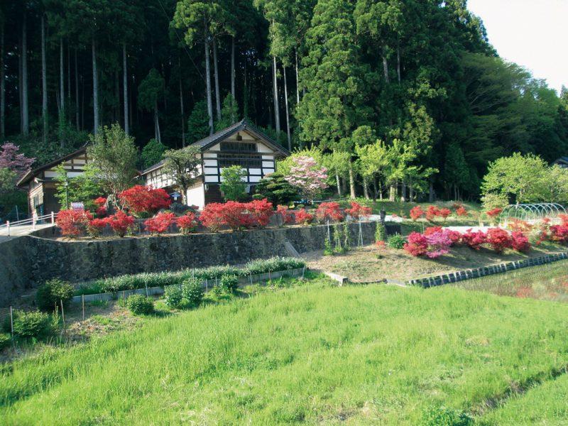 山岸家の庭