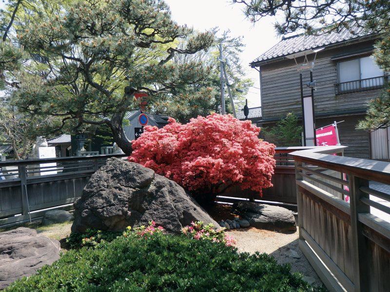 重蔵神社宮司宅庭